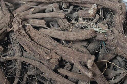木香多少钱一斤?2020年木香价格行情走势分析